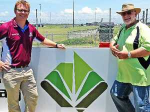 Cutters, growers links continue
