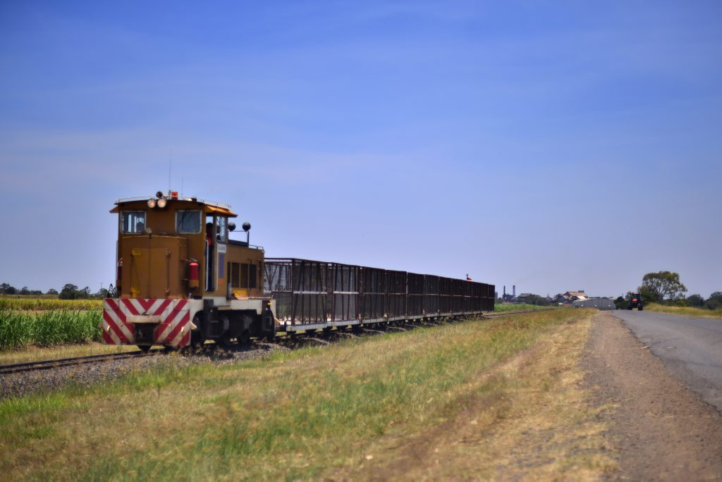 BLUE SKY: A cane train makes its way along the track beside McGills Rd. Photo: Scottie Simmonds / NewsMail
