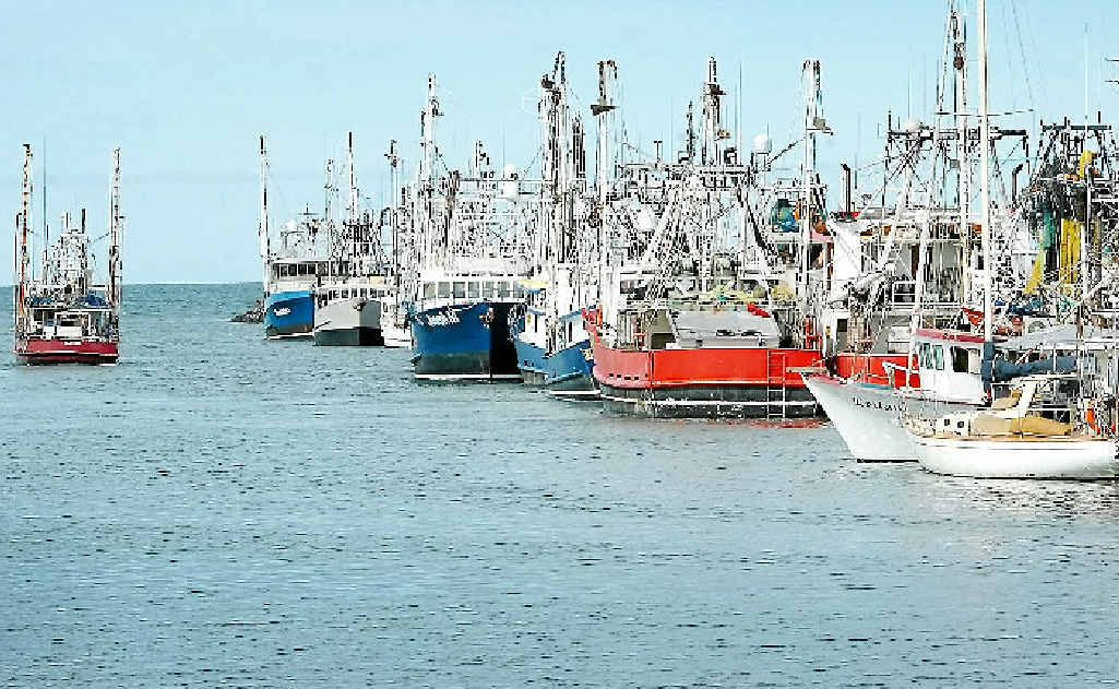 More licence buy back offers on table for commercial fishers