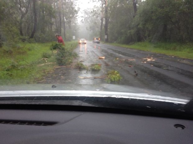 Drivers stopped to clear a tree over the road at Iluka.