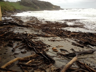 Debris has washed up on the beaches at Yamba and rain fell overnight, continuing off and on this morning.