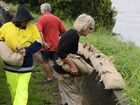 Residents of Ulmarra were preapring to sand bag on Saturday as a second flood was predicted to hit on Sunday. Photo Debrah Novak / The Daily Examiner