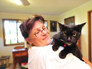 Irresponsible pet owners cop a blast from cat co-ordinator
