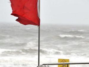 Coast beaches closed after shark sightings