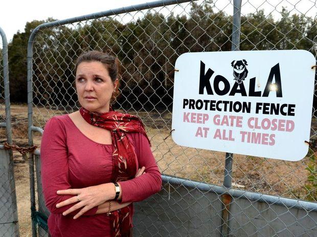 Jenny Hayes is concerned about koala habitat.