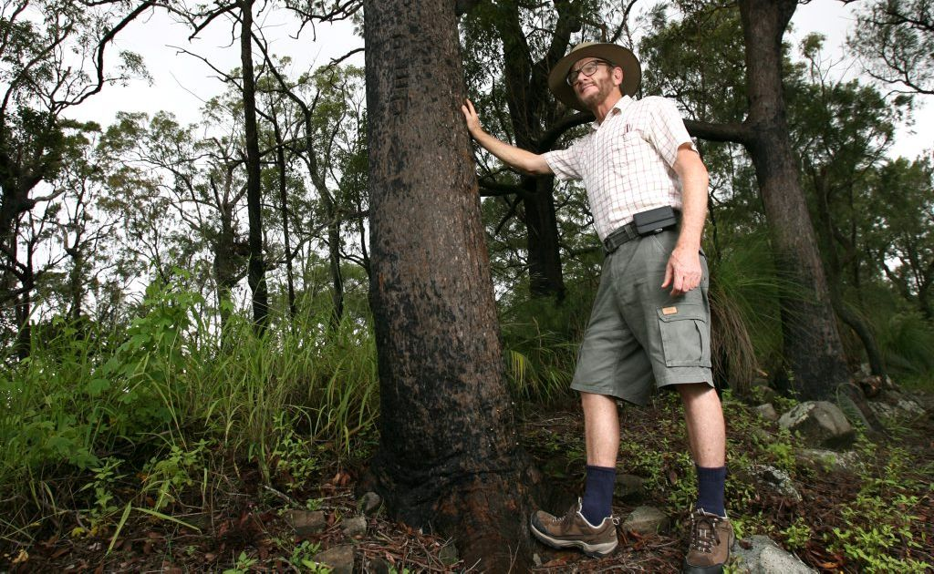 Michael McCabe from the Capricorn Conservation Council is campaigning against changes to logging regulation which could open up state forests to logging. Photo: Chris Ison / The Morning Bulletin