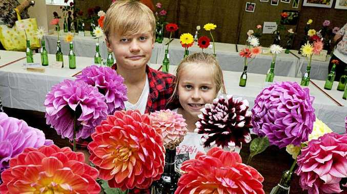 BUDDING ENTHUSIASTS: Harry, 8, and Jorja Hammond, 6, of Strathedan, inspect the colourful dahlias at the Casino and District Garden Club Annual Flower Show and Garden Fair.