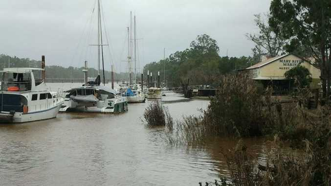 Water is creeping up the banks near the Mary River Marina at lunchtime on Monday.