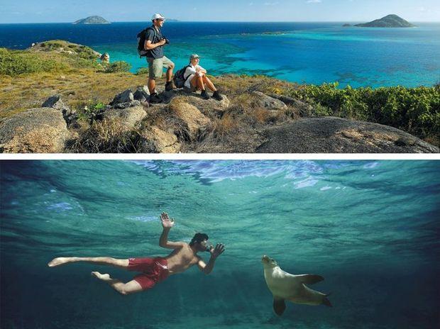 Australia's 'Best Jobs in the World' include Park Ranger (Queensland) and Wildlife Caretaker (South Australia).