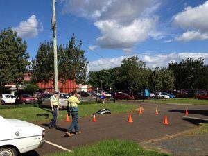 Driver flees scene after bringing down power line