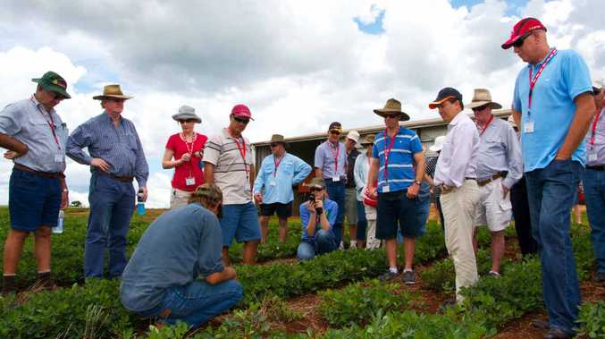 COMMON GROUND: Participants on a Project Catalyst forum field trip learn about innovations in canegrowing.