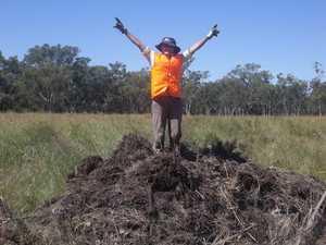 Volunteers needed to help farmers clean up post floods