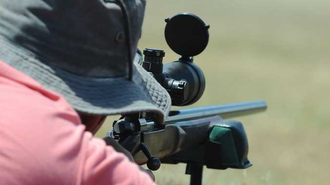 Rise in gun numbers put down to popularity of shooting as sport.