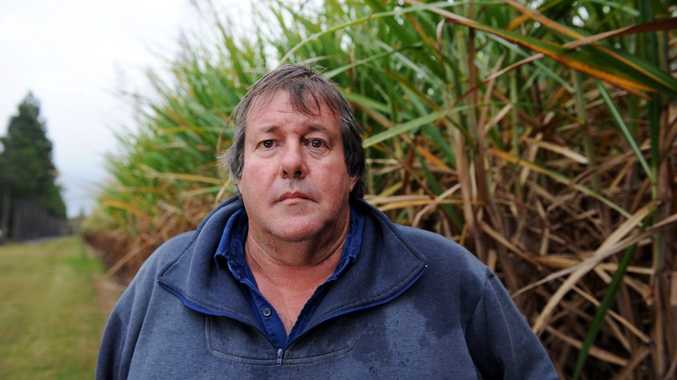 RAIN DELAY: Bundaberg Canegrowers chairman Allan Dingle said many growers were still cleaning up the flood damage on their farms and the continuous wet weather wasn't helping.