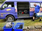 LEAVING TOWN: The AWL begins evacuating its animals from the West Ipswich Rehoming Centre.