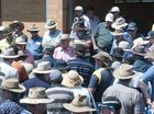 Wagners clearing sale draws wide-brimmed bidders