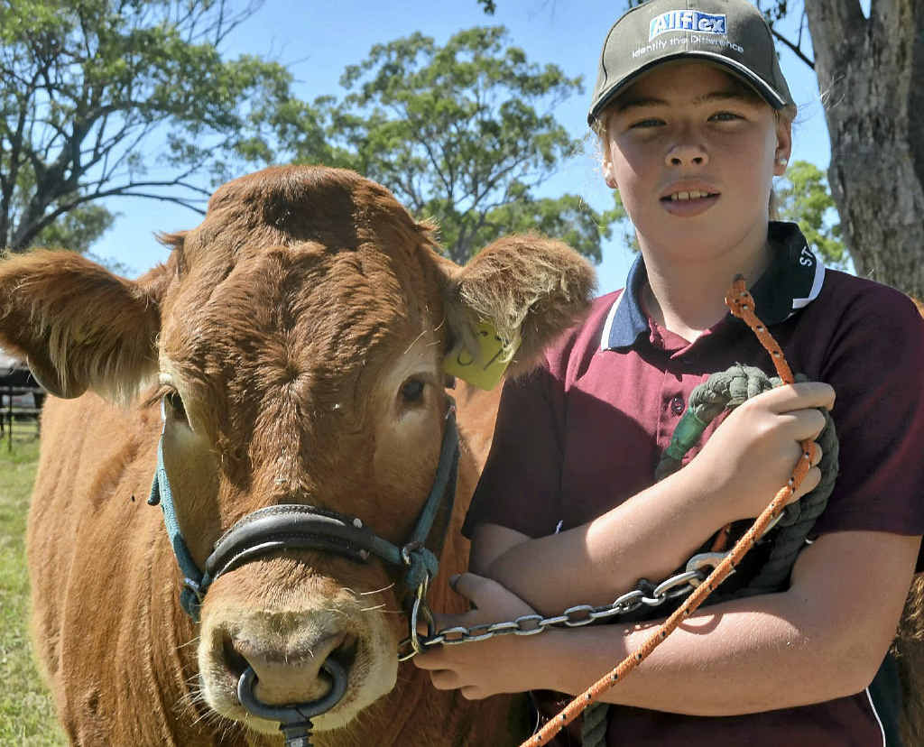 GLORIOUS DAY OUT: Kahlia Williamson, 13, from Stanthorpe High with Glorious Enterprise at the Inglewood Show.