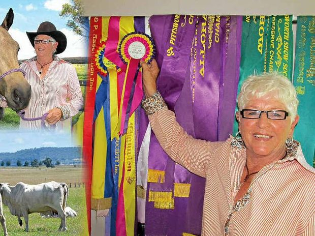 SUCCESS: Sheila O'Donohoe, of Clifton, with the show champion ribbons won by her now 11-year-old paint gelding, Sioux City Slicker. And above with her three-year-old buckskin mare, YB Ice Tee, which has won 20 supreme champion ribbons on the local Darling Downs show circuit.