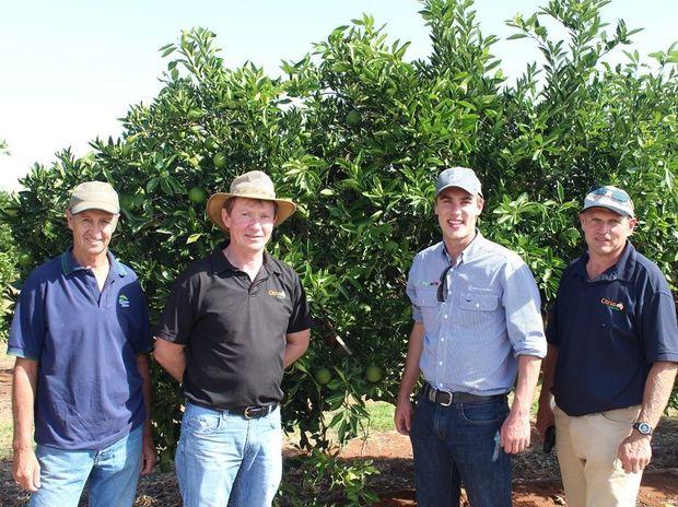 At the Citrus Australia new navel variety forum are (from left) grower Glenn Morris, Andrew Harty of Citrus Australia, Darryl Stretton of Bayer CropScience and Kym Thiel of Citrus Australia.