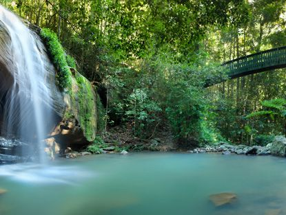 The best waterfalls on the Coast like the one at Buderim, are tricky to find for a tourist.