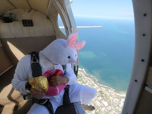 Easter Bunny skydives over Sunshine Coast