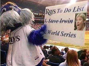 Major league blunder: Mascot in pic mocking Steve Irwin
