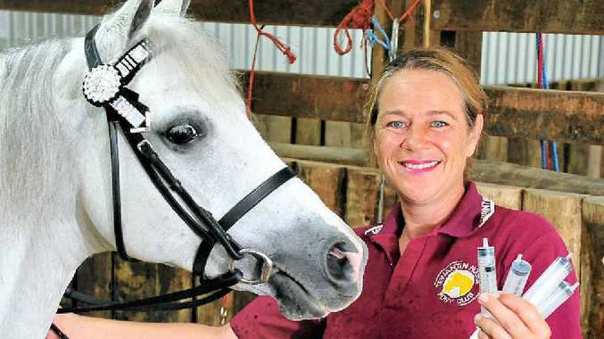 VIRUS ACTION: Tania Ronson, with her show pony Buttons, has organised mass hendra virus vaccinations for Tewantin Noosa Pony Club.