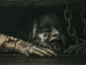 Movie filmed in New Zealand tops US box office