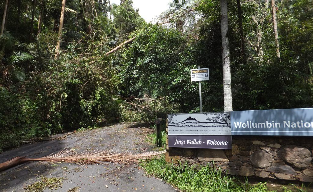A special meeting will be held to discuss the closure of Wollumbin National Park