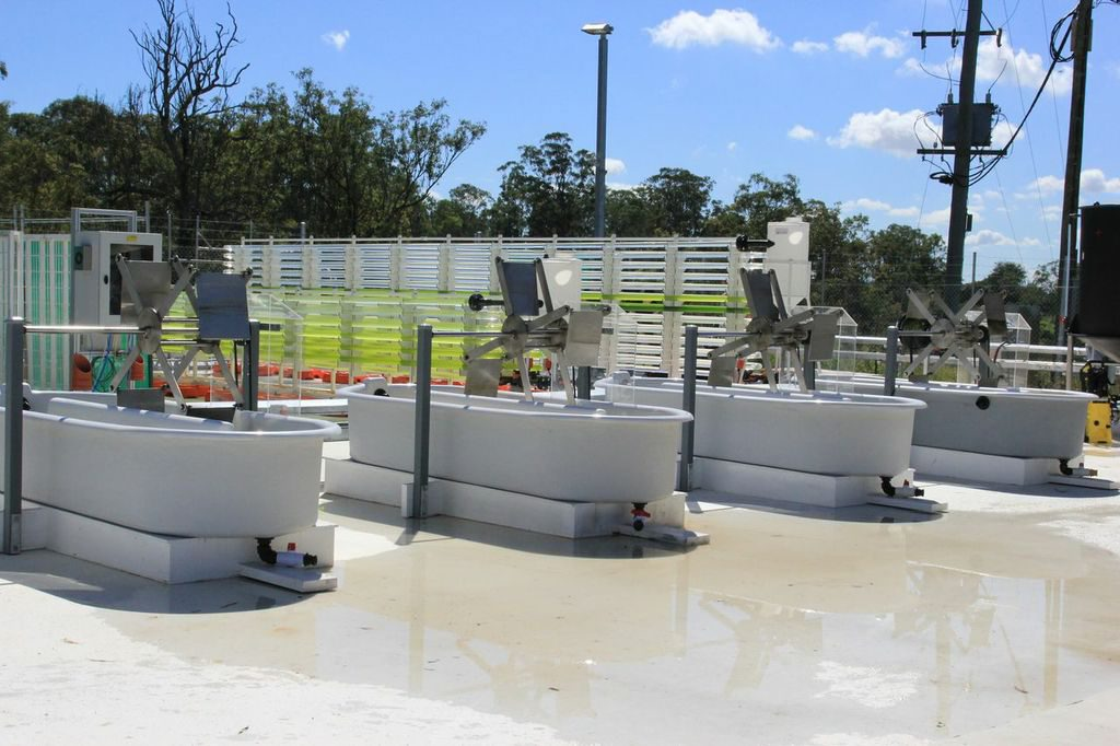 Algae is developed as a fuel source in Brisbane's Solar Biofuels Research Centre which was unveiled on Tuesday.