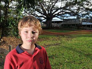 Kids dig in to help save fig