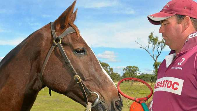 Matt Shepherd and his horse Drummer are ready for the player's debut in the Queensland open men's team at the Barastoc Interstate Series late next week.