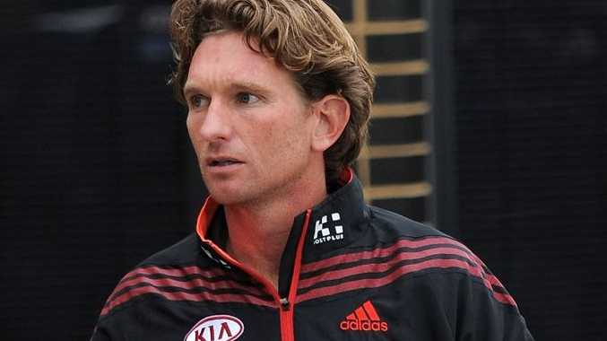 Essendon coach James Hird suffered a severe concussion after falling from his bike.