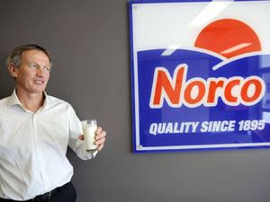 Norco says Fonterra purchase behind huge drop in profit