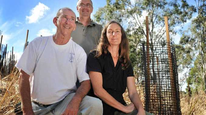 KOALA CORRIDOR: From left, Jim Kinkead (Tregeagle Landcare Group), Mark Wilson (Friends of the Koala) and Maree Thompson (Envite) on the site in Connor Rd, Tregeagle, where trees have been planted to restore Koala habitat.