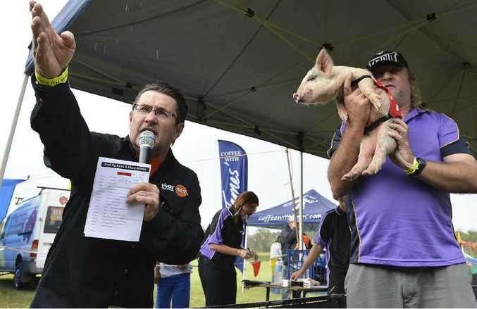 A piglet is held aloft for potential bidders to inspect during the race auction at the pig races.