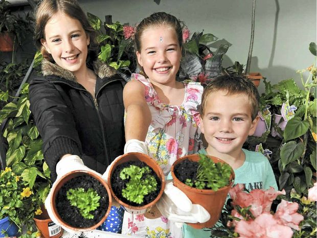 Keen gardeners (from left) EJ, Grace and Flynn Weilenmann with parsley they potted themselves at Bunnings Warehouse in Maroochydore yesterday.