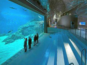 Advanced Aquarium Technologies delivers on $150m aquarium