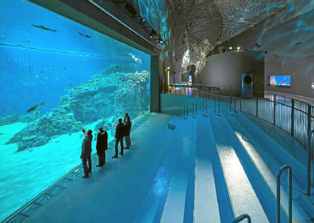 Advanced Aquarium Technologies designed and built the tanks in Denmark's national aquarium.