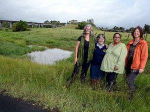 Wetland revitalised
