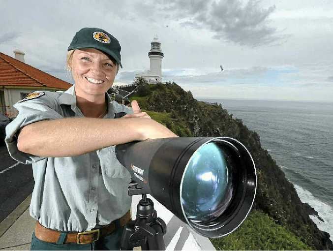 GOAT WATCH: Lee Middleton, a Discovery Ranger with the National Parks and Wildlife Service NSW, keeping an eye on the stranded goat at the Byron Bay Lighthouse and, inset, story published in The Northern Star on July 31, 2003.