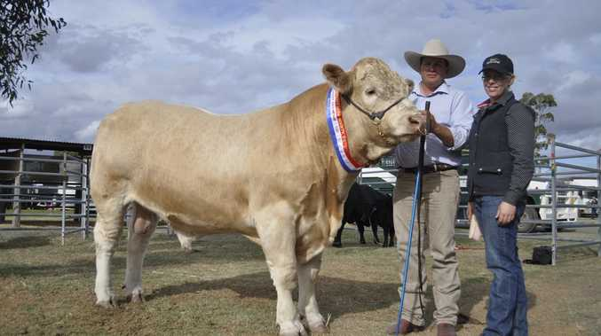 PRIZE BULL: Andrew and Jemma Postle with their Grand Champion bull.