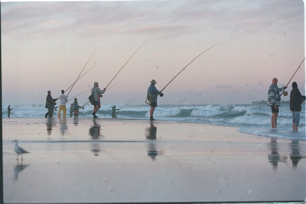 The state's largest recreational fishing survey has revealed around 642,000 Queenslanders wet a line, go crabbing or prawning.