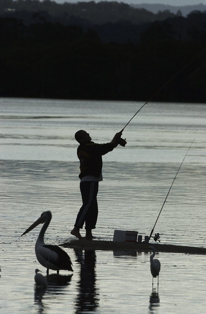 Looking to wet a line? A couple of species need a break for now, says Minister Furner.