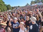 Lesson learned as festival organiser seek to fix long wait