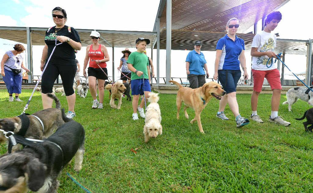 Petts dog walking group participants Rosemary Paidley, Chiara Williams, Kylie Burow, Wendy Gabell, Cameron Archer, Susan Armstrong, Michelle Hill and Josh Connal (and their pooches)at the end of their weekly walk at the Bluewater Quay.