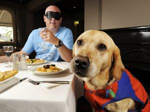 Dining in the Dark to highlight the importance of guide dogs