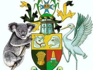 Choat backs koala crest