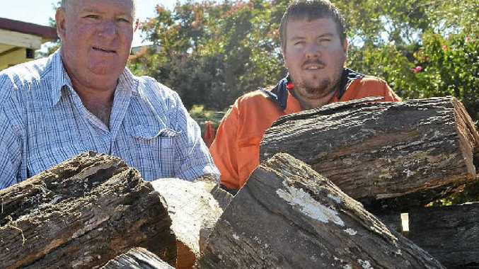 CUT ABOVE THE REST: Bob Locke and his son Mark supply firewood locally as well as southern markets.