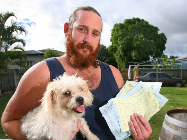 Bullet's escapes over two days has seen his owner cop thousands in fines.